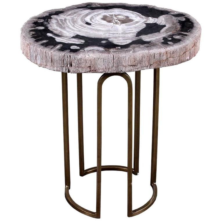 Custom Petrified Wood And Brass Accent Table For Sale