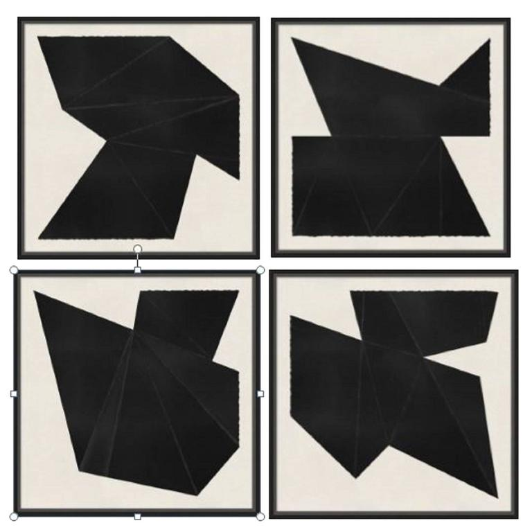 Abstract Black and White Prints 1