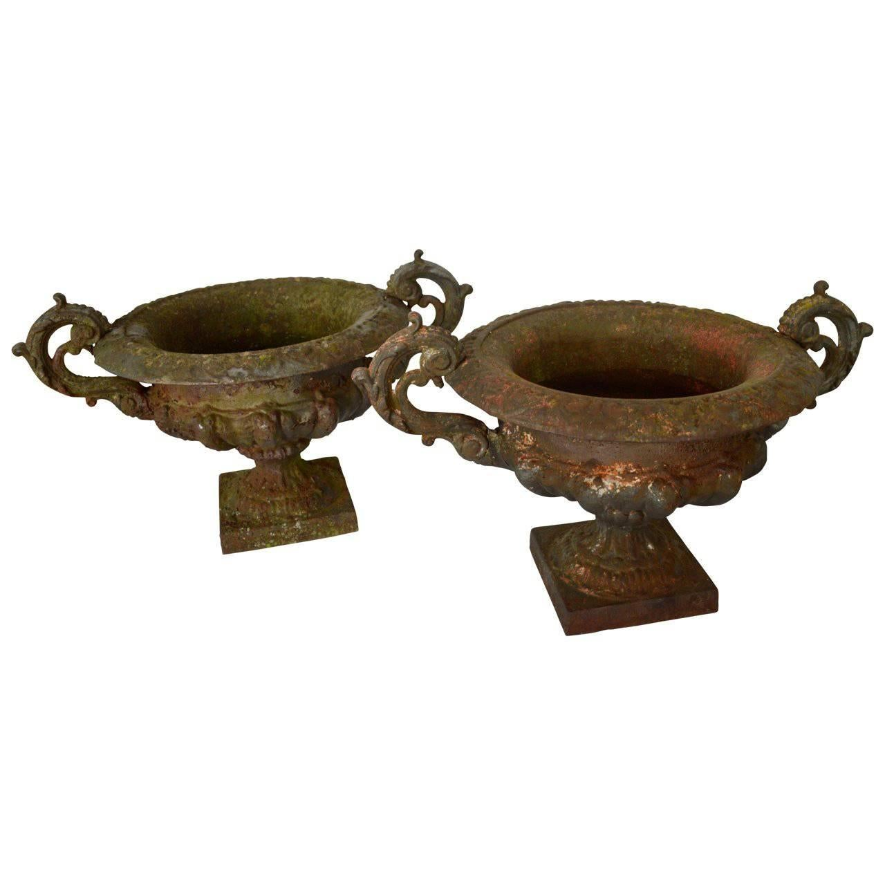 Pair of 19th Century French Cast Iron Planters or Urns