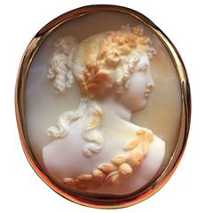 Later 19th Century Antique Shell Cameo Brooch