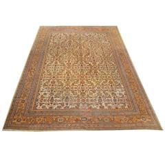 Ziegler Sultanabad Carpet, circa 1890