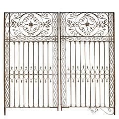 Argentine Wrought Iron Gate