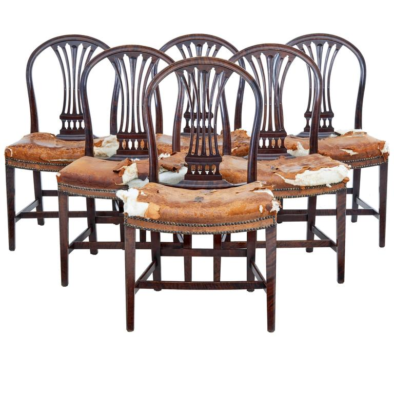Set of Six, 19th Century Birch Swedish Dining Chairs For Sale