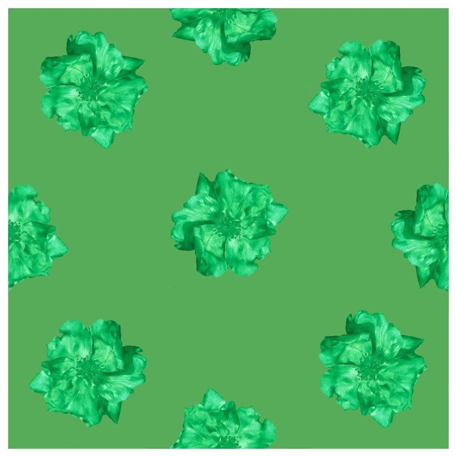 Furr Green Rose, Wallpaper from the Nature Collection For Sale at ...
