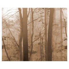 Enchanted Woods, Wallpaper from the for the Very Young Collection