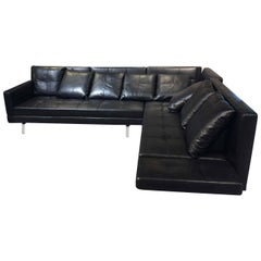 "Sofa ""Amber"" by Manufacturer Brühl in 100% Genuine Leather and Chrome"