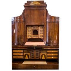 Biedermeier Bureau, Bookcase. Mahogany and lemon wood