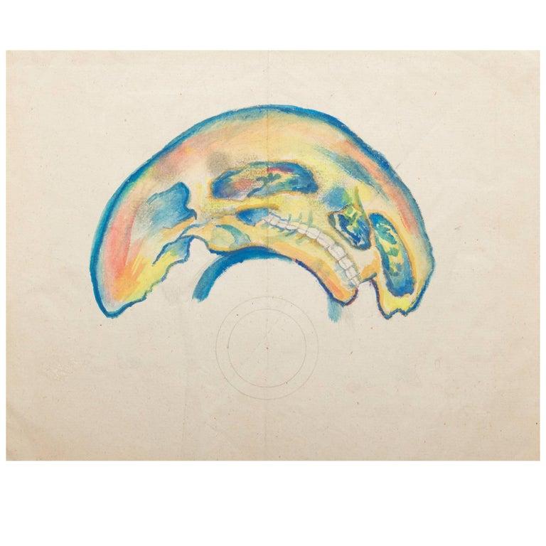 Rare 19th Century Anamorphosis of a Human Skull