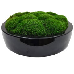 Botanical Ceramic Bowl Black Medium