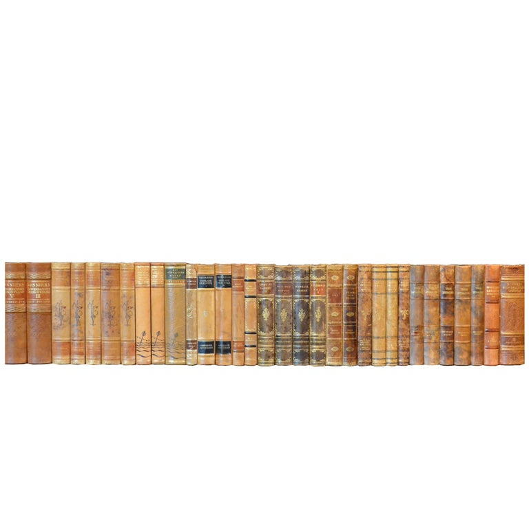 Meter of 20th Century Leather Bound Books, Series 15/16 For Sale