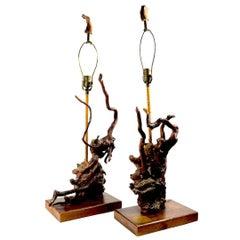 Pair of Sculptural Driftwood Lamps