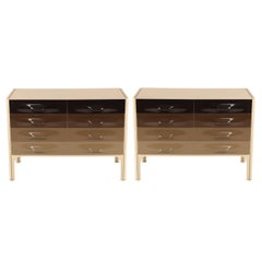 Pair of Raymond Loewy DF-2000 Chests of Drawers in Browns and Grays, circa 1960s