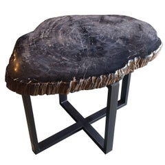 Sliced Petrified Wood Side Table, Indonesia, Contemporary