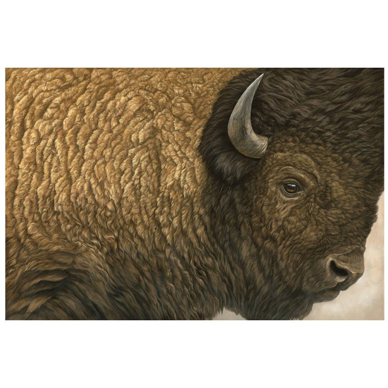 """Close Encounter"" Bison Painting by Anna Widmer"