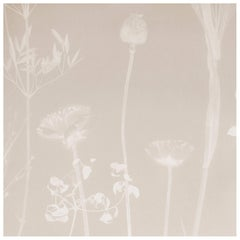 Flora Thistle Wallpaper or Wall Mural in Matte Cyanotype Taupe