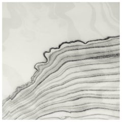 Sumi Tempest Wallpaper or Wall Mural in Matte Black and Grey Lines