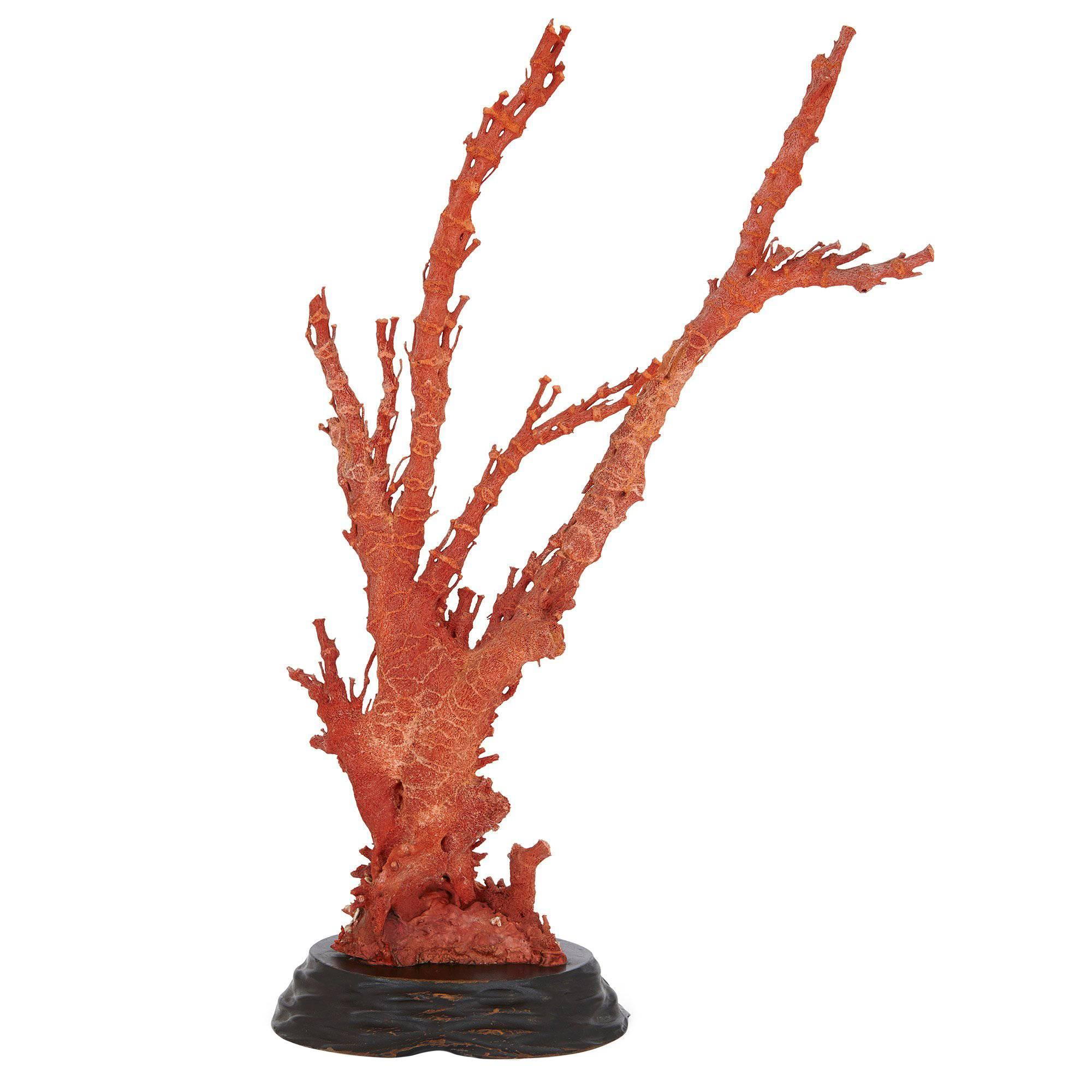 Qing Dynasty Antique Chinese Red Coral Specimen