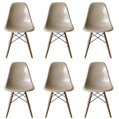 Set of Six Eames Greige DSW Herman Miller, USA Dining Chairs