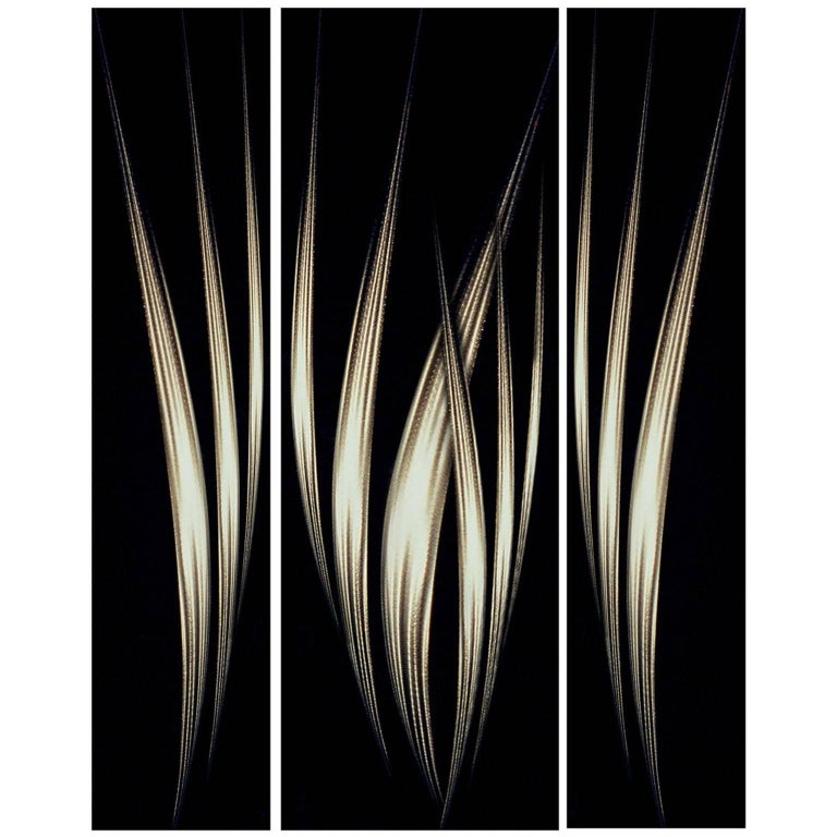 """Effusion"" Photography by Olivier Dassault For Sale"