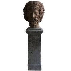 19th Century Marble Head of Zeus