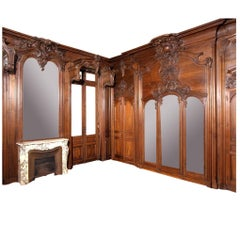 Paneled Boiserie from the Chateau Du Razat