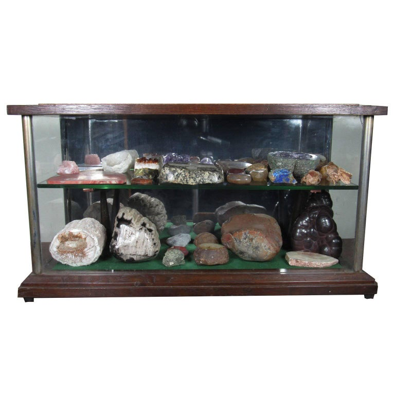 English Specimen Collection with 19th Century Mahogany and Glass Vitrine