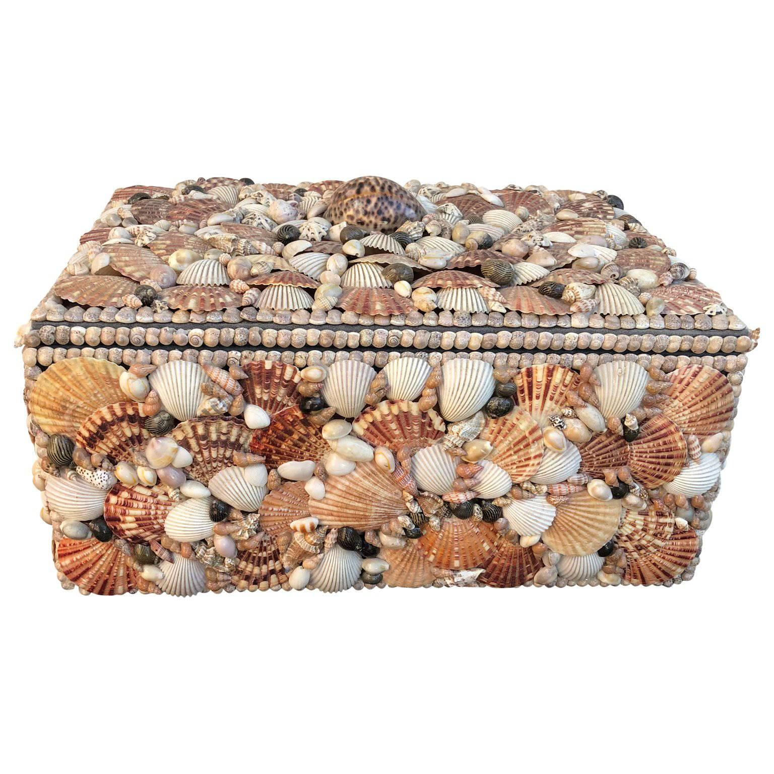 Vintage Jewelry Box Covered Pacific Seashell at 1stdibs