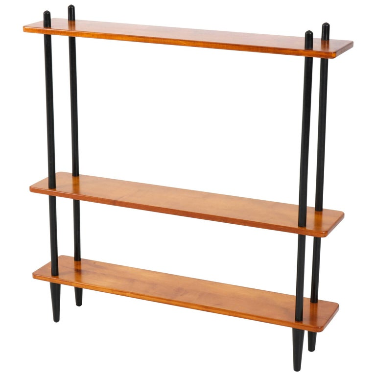 Mid-Century Modern Bookcase or Room Divider in the Style of Lutjens, 1950s