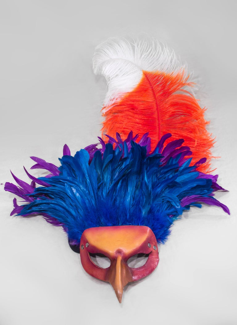 26ff189a68ec9 Feathered Leather Carnivale Mask