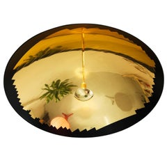 Hatchlight Reflective Ceiling Light