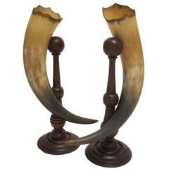 Antique Horn Cornucopias Garnitures, American, Late 19th Century