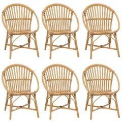 Rattan Set of Six Armchairs