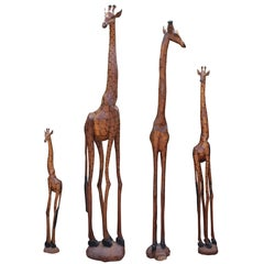 Set of Four South African Hand-Carved Giraffe Sculptures in a Variety of Sizes