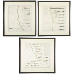 Mid-19th Century Set of Three Charts of the West Coast