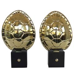 Pair of Brass Turtle Shell Sconces
