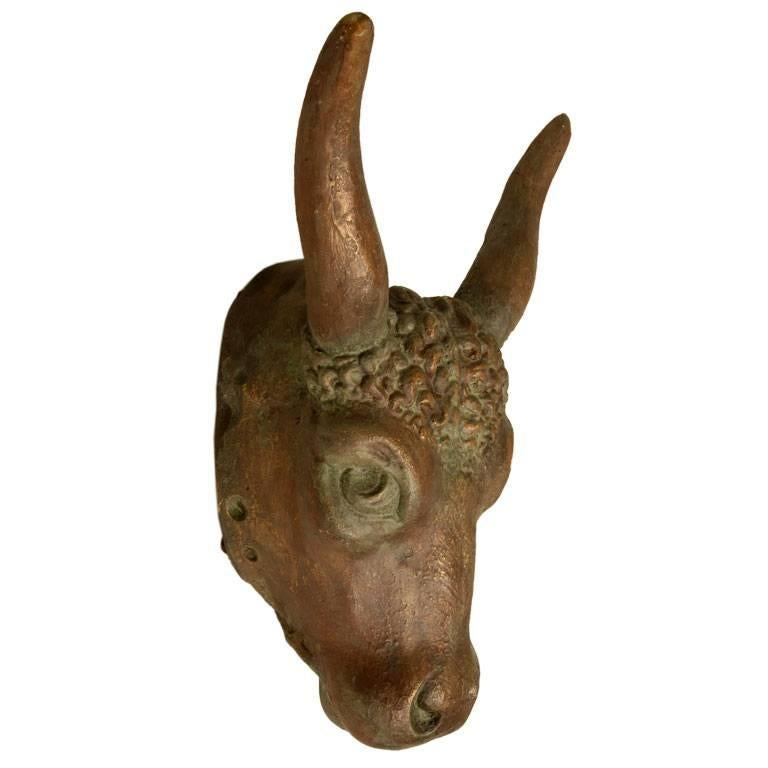 French Butcher Shop Steer Head