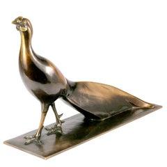 French Bronze Pheasant