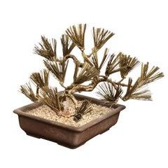 Brass Asian Bonsai Tree Form Sculpture