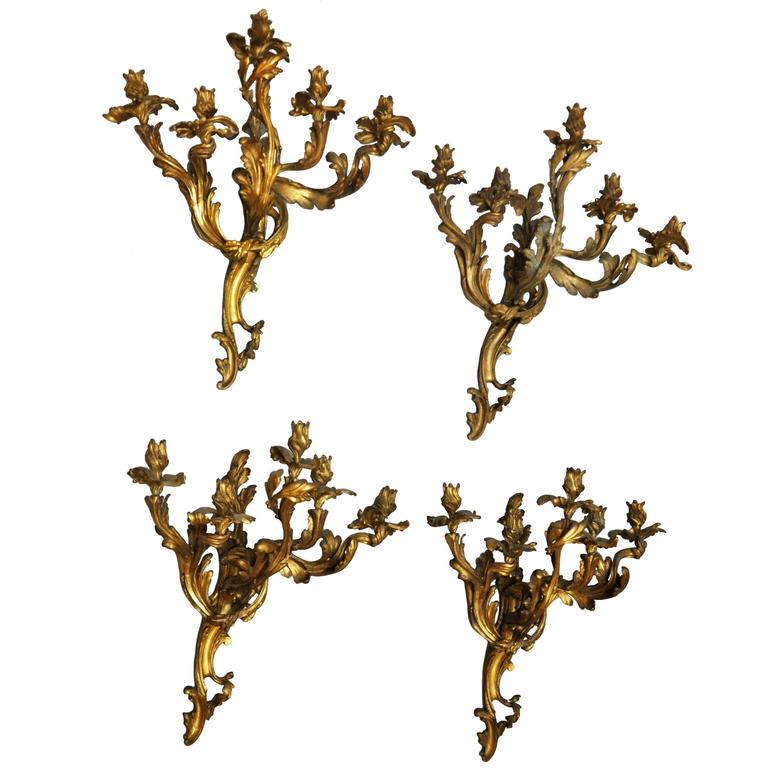 Rare and prominent set of four extra-large French Rococo five-light gilt bronze candelabra sconces, sculpted in the Louis XV design, scrolling acanthus leaves arms supporting flower petal candle cups. With the candles the sconces are 41