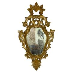 Spanish 19th Century Rococo style Carved Giltwood Mirror , 19th Century