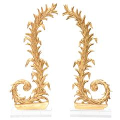 Pair of 19th Century Italian Giltwood Carvings on Lucite Bases