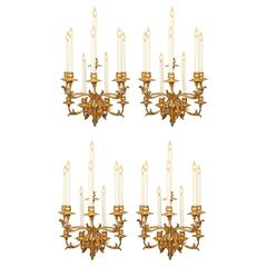 Rare Set of Four Monumental Italian Early 19th Century Rococo Sconces