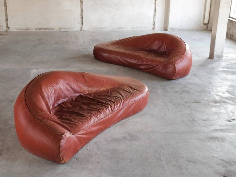 Set of sofa's, in leather, European, 1970s.   Exceptional set of two organic shaped sofa's in cognac leather. The sofa consist of a seating with curved round back. All formed in one organic shape. The seating runs smoothly over into the back and