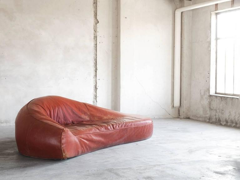Mid-Century Modern Exceptional Set of Two Organic Shaped Sofa's in Patinated Leather  For Sale