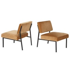 Airborne Iron and Velvet Chairs Mid Century  Brown 1950, France
