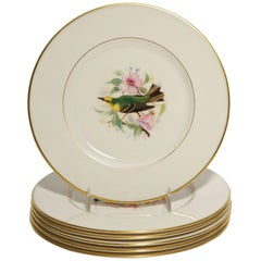 Eight Dessert Plates Hand-Painted, Artist Signed, Delightful Songbirds