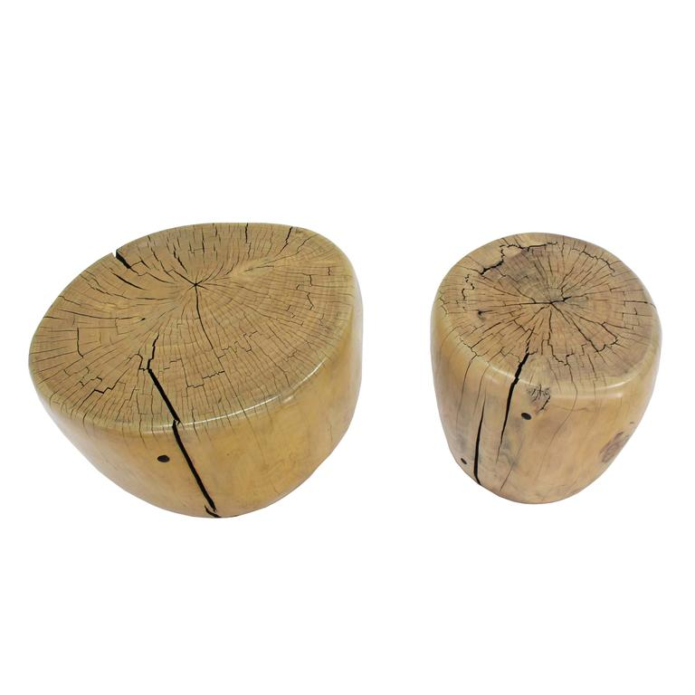 Pair of Round Natural Specimen Wood Side Tables