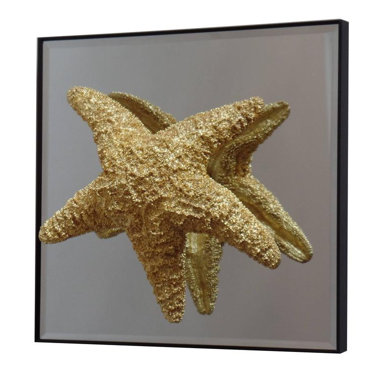 24 Starfish and Mirror Wall Decorations