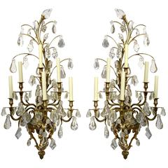 Monumental Pair of Gilt Bronze and Crystal Six Arm Wall Sconces, Baccarat