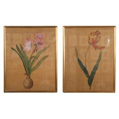 Pair of Gouaches on Silk Attributed to Hai Feng